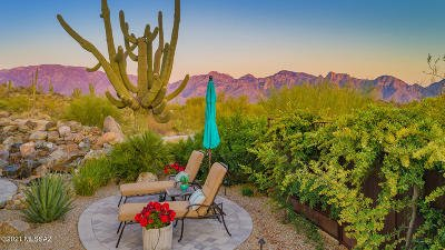 Oro Valley Single Family Home For Sale: 14113 N Stone Ledge Place