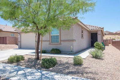Vail Single Family Home Active Contingent: 10834 E Painted Mesa Place