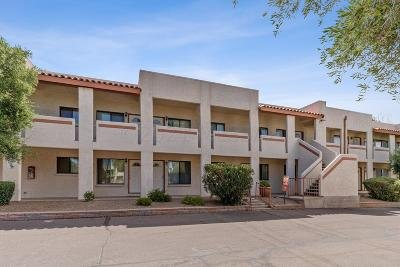 Tucson Condo For Sale: 455 W Kelso Street #106