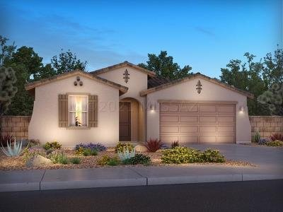 Oro Valley Single Family Home For Sale: 11484 N Gemini Drive