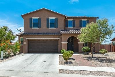 Tucson Single Family Home Active Contingent: 4382 S Robles Well Drive