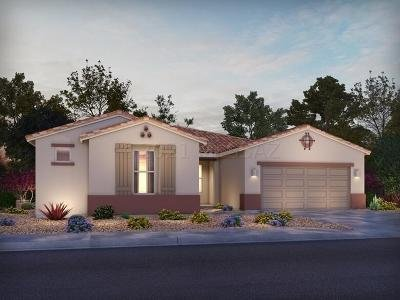 Oro Valley Single Family Home For Sale: 11941 N Silver Village Place