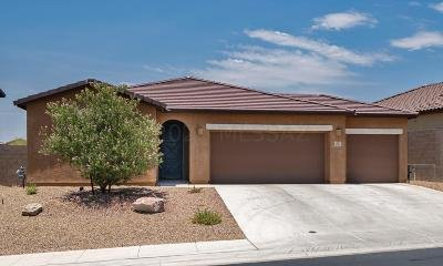 Tucson Single Family Home Active Contingent: 4872 W Willow Wind Way
