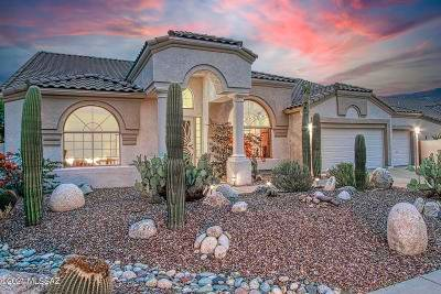 Oro Valley Single Family Home Active Contingent: 12934 N Whitlock Canyon Drive
