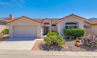 Oro Valley Single Family Home For Sale: 2199 E Buster Mountain Drive