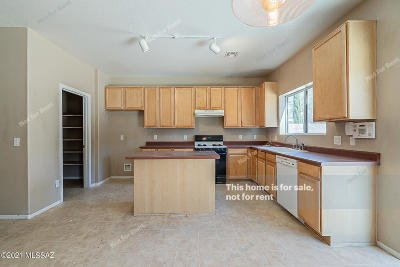 Tucson Single Family Home For Sale: 3583 E Mecate Road