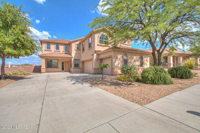 Vail Single Family Home For Sale: 10929 S Alley Mountain Drive
