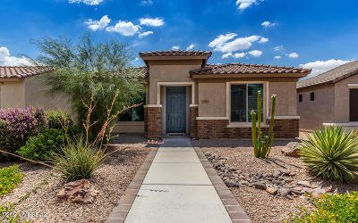 Vail Single Family Home Active Contingent: 10077 S Telega Drive