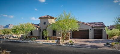 Oro Valley Single Family Home For Sale: 487 W Echo Point Place