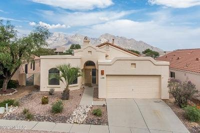 Oro Valley Single Family Home For Sale: 11086 N Sand Pointe Drive