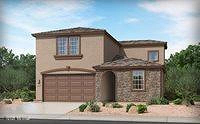 Tucson Single Family Home For Sale: 7989 S Silver Lillie Way S