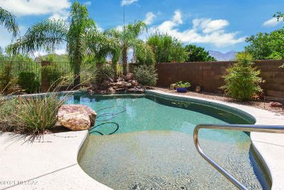 Oro Valley Single Family Home Active Contingent: 13030 N Eagleview Drive