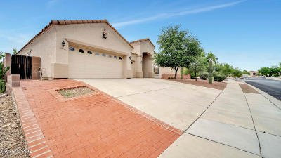 Tucson Single Family Home For Sale: 4977 N Louis River Way