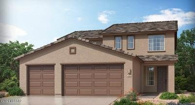 Vail Single Family Home For Sale: 12965 E Pantano View Drive
