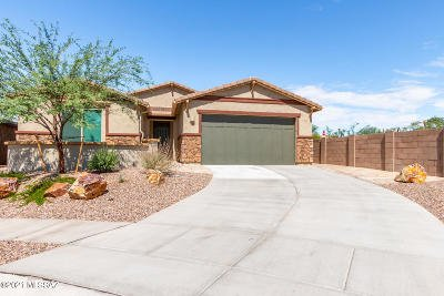 Tucson Single Family Home For Sale: 710 E Silver Canyon Place