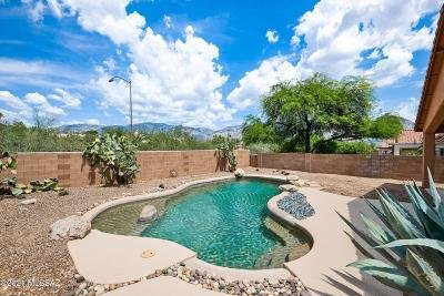 Oro Valley Single Family Home Active Contingent: 12334 N New Dawn Avenue