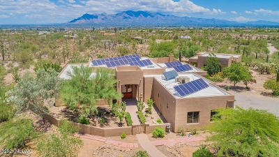 Tucson Single Family Home For Sale: 3610 W Goret Road
