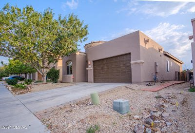 Vail Single Family Home For Sale: 10382 S Painted Mare Drive