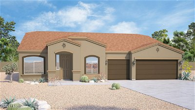 Oro Valley Single Family Home For Sale: 12348 N Miller Canyon Court