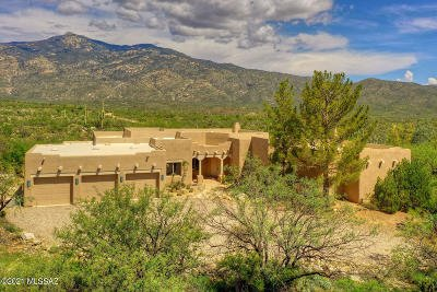 Vail Single Family Home For Sale: 6000 S X9 Ranch Road