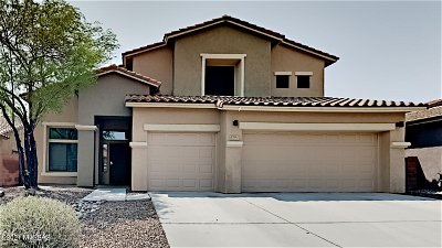 Tucson Single Family Home For Sale: 8282 N Rocky Brook Drive