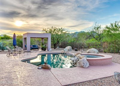 Oro Valley Single Family Home For Sale: 740 W Bright Canyon Drive