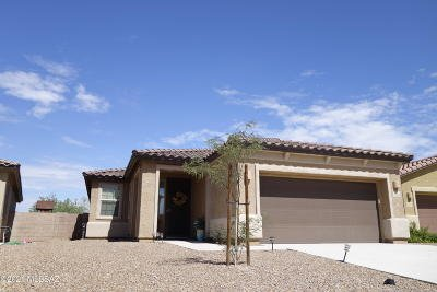 Tucson Single Family Home For Sale: 6180 W Bandelier Court