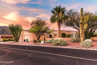 Tucson Single Family Home For Sale: 5300 N Grey Mountain Trail