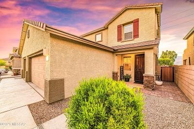 Tucson Single Family Home For Sale: 8280 E Magee Hill Loop