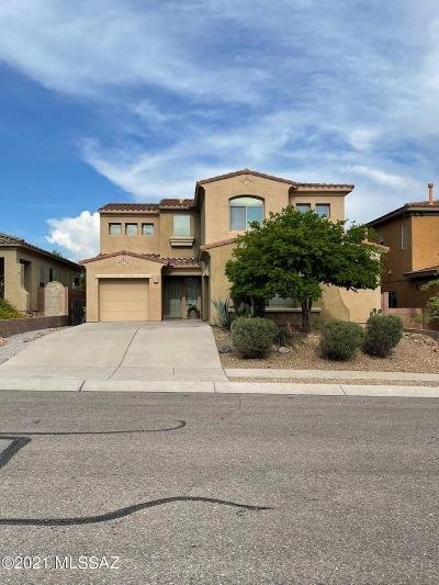 Tucson Single Family Home For Sale: 2439 S Aztec Point Trail