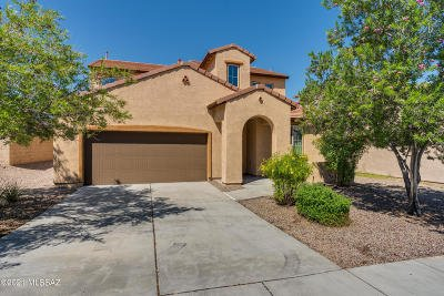 Vail Single Family Home For Sale: 694 S Desert Haven Road