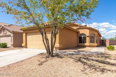 Tucson Single Family Home For Sale: 7992 W Star Catcher Drive