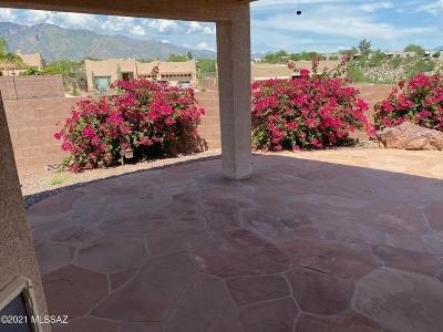 Tucson Single Family Home For Sale: 4924 N Louis River Way