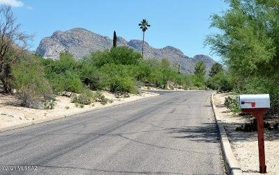 Oro Valley Single Family Home For Sale: 745 W Bangalor Drive