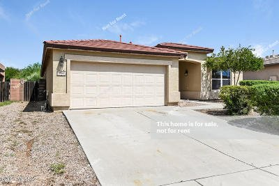 Vail Single Family Home For Sale: 10669 S Silverbluff Drive