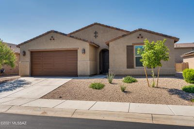 Marana Single Family Home Active Contingent: 12451 N Stainsbury Place