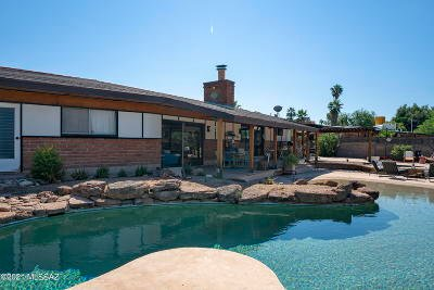 Tucson Single Family Home For Sale: 510 S Essex Lane