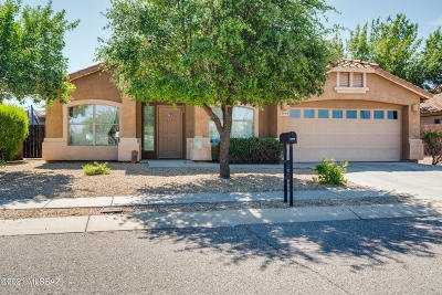Vail Single Family Home Active Contingent: 10949 S Distillery Canyon Spring Drive