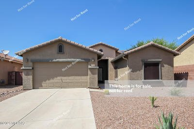 Tucson Single Family Home For Sale: 8265 N Rocky Brook Drive