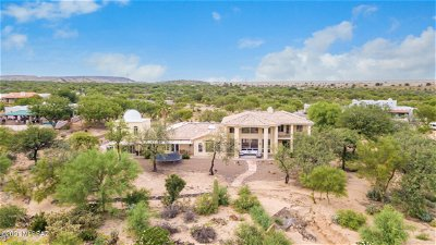 Sahuarita Single Family Home Active Contingent: 1675 W Twin Buttes Road