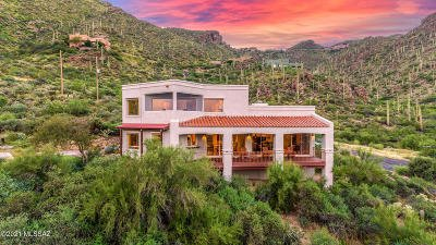 Tucson Single Family Home For Sale: 1490 N Sky Canyon Place