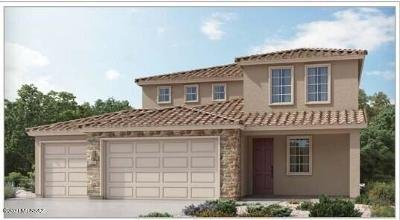 Vail Single Family Home For Sale: 12984 E Pantano View Drive