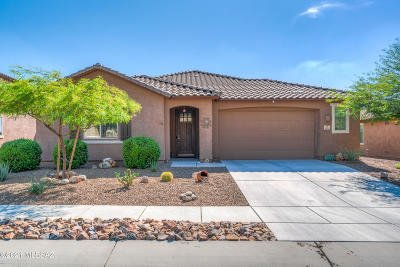 Tucson Single Family Home Active Contingent: 38874 S Running Roses Lane
