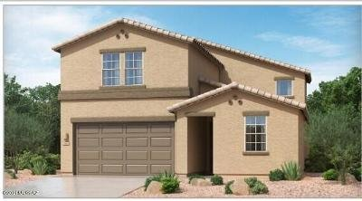 Tucson Single Family Home For Sale: 8105 S Jaeger Place