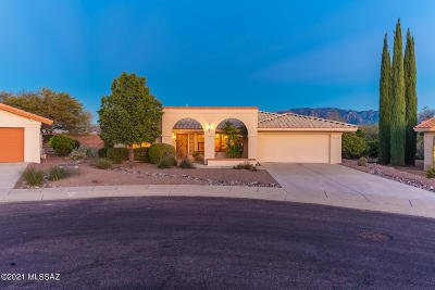 Oro Valley Single Family Home For Sale: 14670 N Wonderview Drive