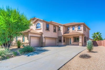 Vail Single Family Home Active Contingent: 10754 S Distillery Canyon Spring Drive
