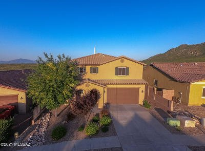 Vail Single Family Home For Sale: 17213 S Mesa Shadows Drive