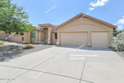 Vail Single Family Home For Sale: 579 W Chatfield Street