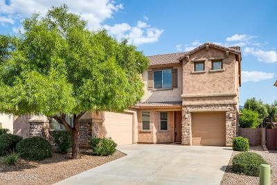 Oro Valley Single Family Home For Sale: 1197 W Rodriguez Road
