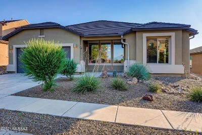 Vail Single Family Home For Sale: 598 S Desert Haven Road